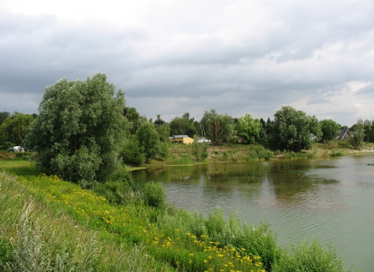 leeuwenhof2