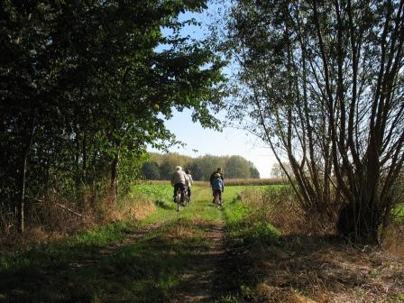 fietsen door de Vinderhoutse Bossen