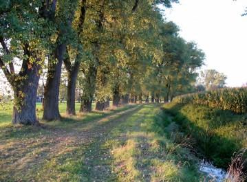 langs de Meirebeek