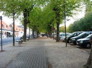 drongenplein lindebomen